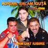 Ti-Am Dat Iubire / I Gave You Love, Various Artists