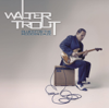 Walter Trout - Blues for the Modern Daze  artwork
