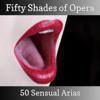 Fifty Shades of Opera - 50 Sensual Arias - Bulgarian National Radio Symphony Orchestra, John Landor, Czech Symphony Orchestra & Julian Bigg