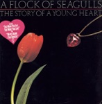 A Flock of Seagulls - The Story of a Young Heart