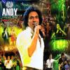 Andy - Niloofar artwork
