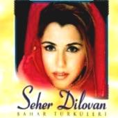Seher Dilovan - Esme Deli Rüzgar