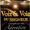 Voix & voie du seigneur, vol. 3 (Compilation 100% Adoration) - Various Artists