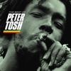 Peter Tosh - Johnny B. Goode