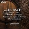 Gabor Lehotka - Fantasy and Fugue in A minor, BWV 561