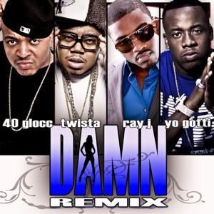 Damn (Remix) [feat. Ray J, Twista and Gotti] - Single Mp3 Download