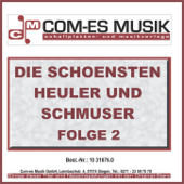Fahrende Musikanten (Re-Recording)