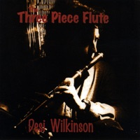The Three Piece Flute by Desi Wilkinson on Apple Music
