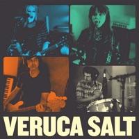 veruca salt albums wwwpixsharkcom images galleries