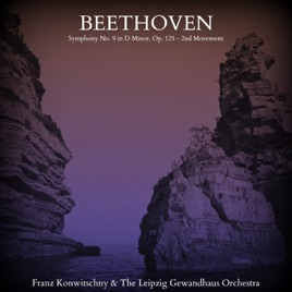 Beethoven: Symphony No  9 in D Minor, Op  125 - 2nd Movement