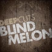 Blind Melon - 2 X 4