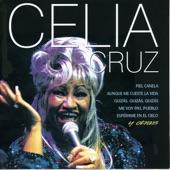 Celia Cruz - Quizas, Quizas, Quizas