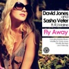 Fly Away (Remixes) [David Jones vs. Sasha Veter] [feat. RJ Maine] ジャケット写真