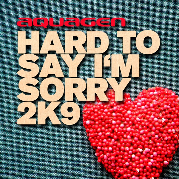 Hard to Say I'm Sorry 2K9 - EP
