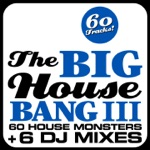 The Big House Bang!, Vol. 3 (60 House Monsters + 6 DJ Mixes)