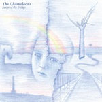 The Chameleons - Up the Down Escalator