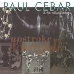 Paul Cebar - Didn't Leave Me No Ladder