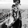 Buddy - Opening Theme of