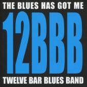 Twelve Bar Blues Band - Everyday I Have the Blues