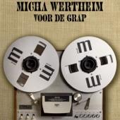 Micha Wertheim - In A Manner Of Speaking