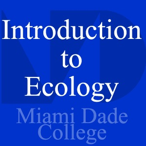 Introduction to Ecology PCB2033 - Rene Revuelta - Video