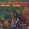 When the Feeling Hits You! (Sammy Davis Meets Sam Butera & The Witnesses)