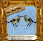 David Rotheray - Crows, Ravens & Rooks (feat. Kathryn Williams)