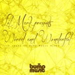 Lil Mark Presents Wired & Wonderful 5 Years of Bump Music