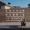 Calvin Harris - Sweet Nothing (feat. Florence Welch) artwork