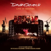 David Gilmour - A Great Day for Freedom (Live In Gdansk)