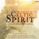 Medley: Miller's Crossing, The Kiss, Last of the Mohicans - Celtic Spirit