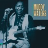 King of the Electric Blues, Muddy Waters