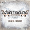 George Thorogood & The Destroyers - Bad to the Bone artwork