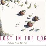 Lost In The Fog - Juniper Berry