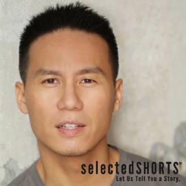 Selected Shorts: Draft Day audiobook