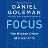 Daniel Goleman - Focus: The Hidden Driver of Excellence (Unabridged) Grafik
