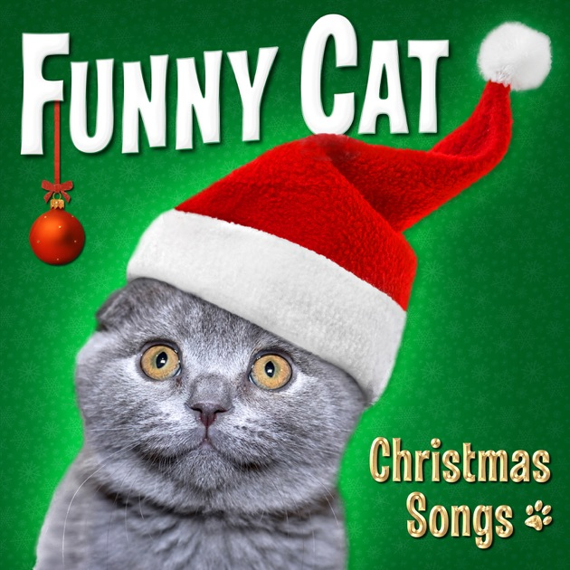 Funny Cat - Christmas Songs by Funny Cats on Apple Music
