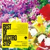 BEST OF ELECTRO STEP