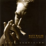 Matt Walsh Acoustic Quartet - Working Stiff