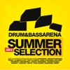 Drum & Bass Arena Summer Selection 2012