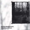 Gayla Drake Paul - The View from My Window
