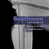 Pinchas Zukerman/Daniel Barenboim - Violin Sonata No. 5 in F, Op.24 'Spring' (1999 - Remaster): I. Allegro