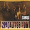 2Pac - Souljas Story
