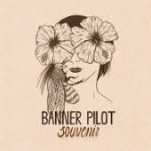 Banner Pilot - Summer Ash