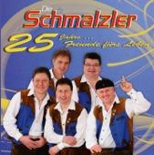 Die Schmalzler - A Brise Volksmusik