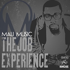 The Job Experience - Single Mp3 Download