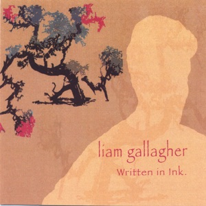 The Liam Gallagher - Perfect Sight