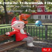 Deutsche Volksmusik Hits - Lieder zum Fasching & Karneval: Stimmungs- & Party-Hits, Vol. 2