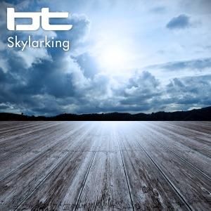 Skylarking - Single