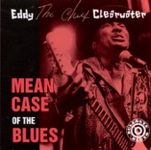 "Eddy ""The Chief"" Clearwater - Look Whatcha Done"